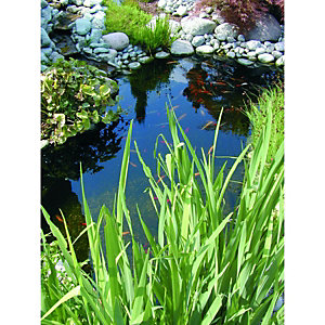 Wickes Medium Pond Kit 600L