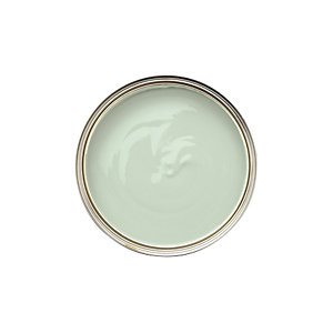 Dulux Bathroom+ Tester Pot Willow Tree 50ml