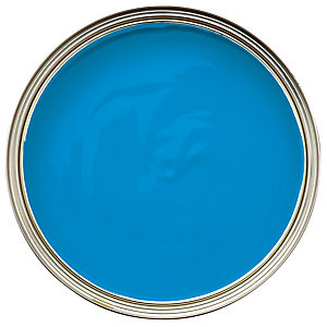 Dulux Endurance+ Matt Striking Cyan 2.5L