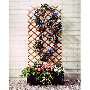 Wickes Expanding Trellis 1.83m x 600mm Autumn Gold