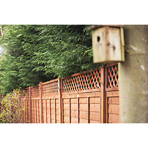 Wickes Fence Top Trellis Diamond Lattice 1830mmx300mm Autumn Gold