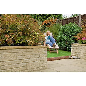 Wickes Marshalite Walling 220x100mm Buff 320 Pack