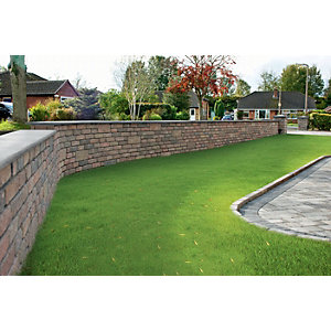 Wickes Drivesett Tegula Walling 440x100mm 80 Pack