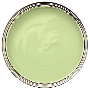 Wickes Colour @ Home Vinyl Matt Emulsion Paint- Hopes Sapling 2.5L