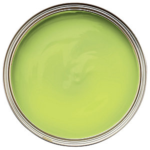 Wickes Colour @ Home Vinyl Matt Emulsion Paint Lime 2.5L