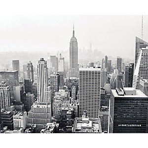 ohpopsi Empire State Wall Mural Multi