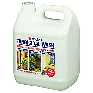 Wickes All Purpose Fungicidal Wash 4 Litre