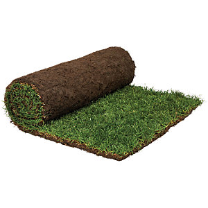 Rolawn Medallion Grass Turf Roll 1m2