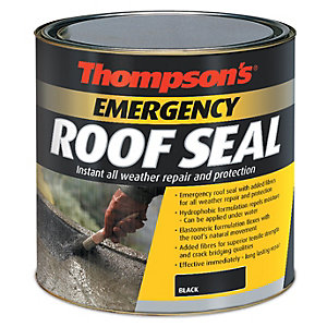 Thompsons Emergency Roof Seal Black 1L