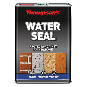 Thompsons Waterseal Waterproof & Protector 5L