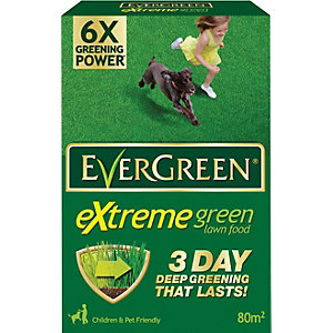 Evergreen Extreme Green Carton