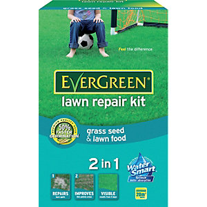 EverGreen Lawn Repair Kit