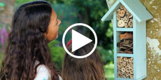 Video Guilde showing how to build a bee hotel