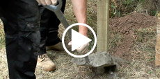 Video guide showing how to install a fence post into soil