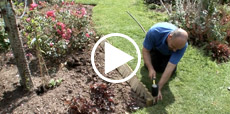 Video guide showing how to install log roll edging
