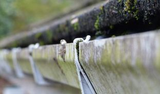 Maintaining roofs & guttering