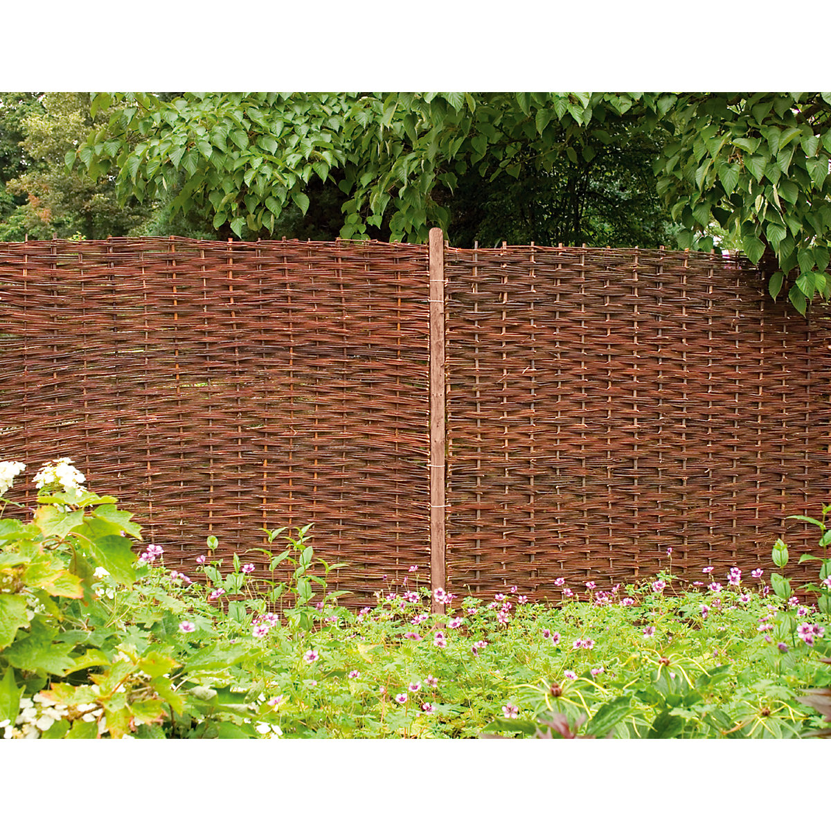 Forest Garden Woven Willow Fence Screen 1800mm x 1800mm - 6 ft x 6 ...