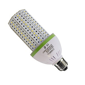 Casell LED Day Light Corn Bulb 20W