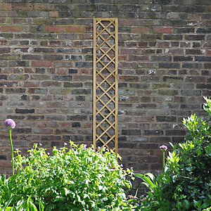 Hidcote Lattice - 180 x 30cm - Pack of 3