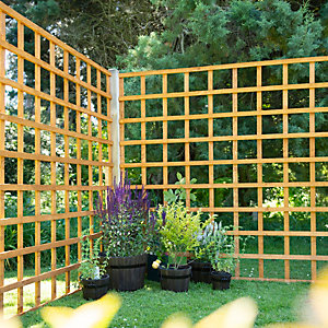 Larchlap Dip Treated Garden Trellis Panel 1830mm x 1830mm
