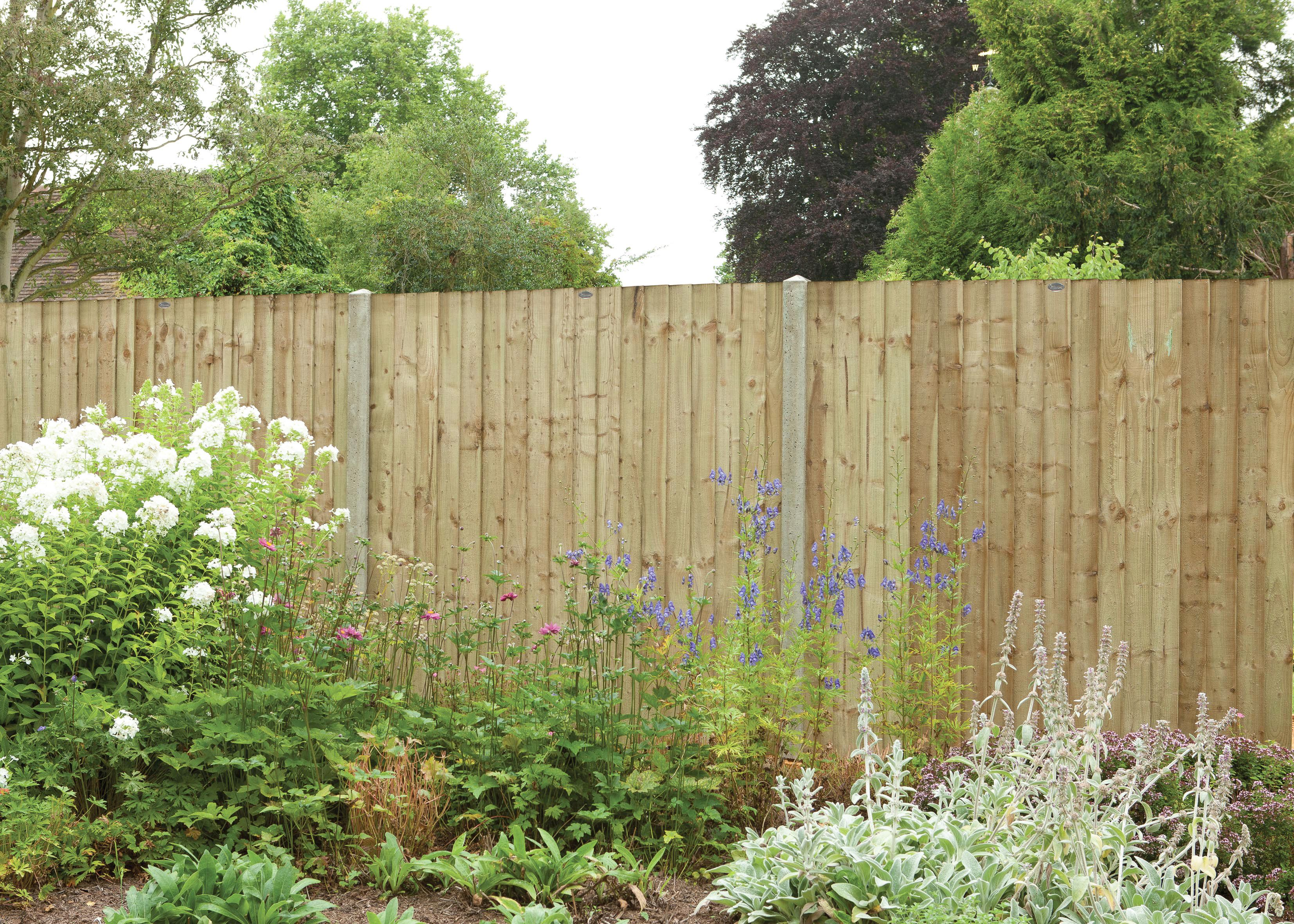 Featheredge Pressure Treated Fence Panel 1828mm x 1828mm  sc 1 st  Travis Perkins : travis perkins tenterden - memphite.com