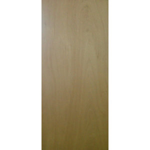 Doorblank FD30 Fire Door Unlipped