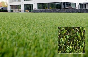 Elise - Artificial Grass