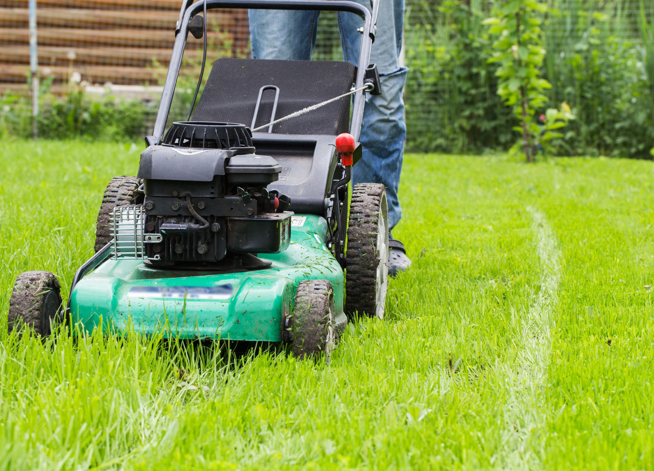 Lawnmower features to look out for