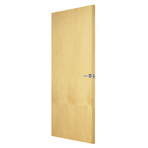 Internal flush ash veneer Fire door
