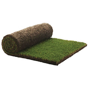 Rolawn Medallion Finest Exterior Multi Purpose Turf 1m² Roll