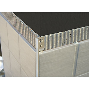 Genesis 12mm Polished Chrome Straight Edge Tile Trim ESA120.91